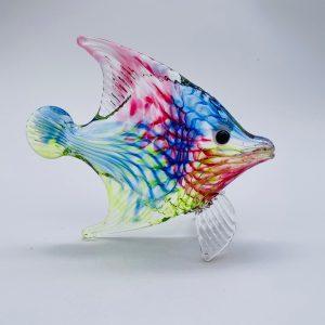 Multi Twist Angelfish