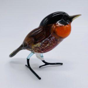 Standing Black & Orange Bird